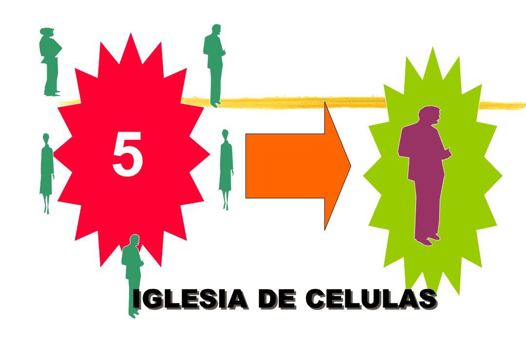 5 IGLESIA DE CELULAS