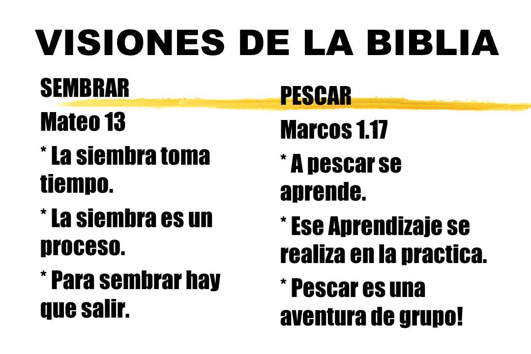 VISIONES DE LA BIBLIA SEMBRAR PESCAR Mateo 13 Marcos 1.17