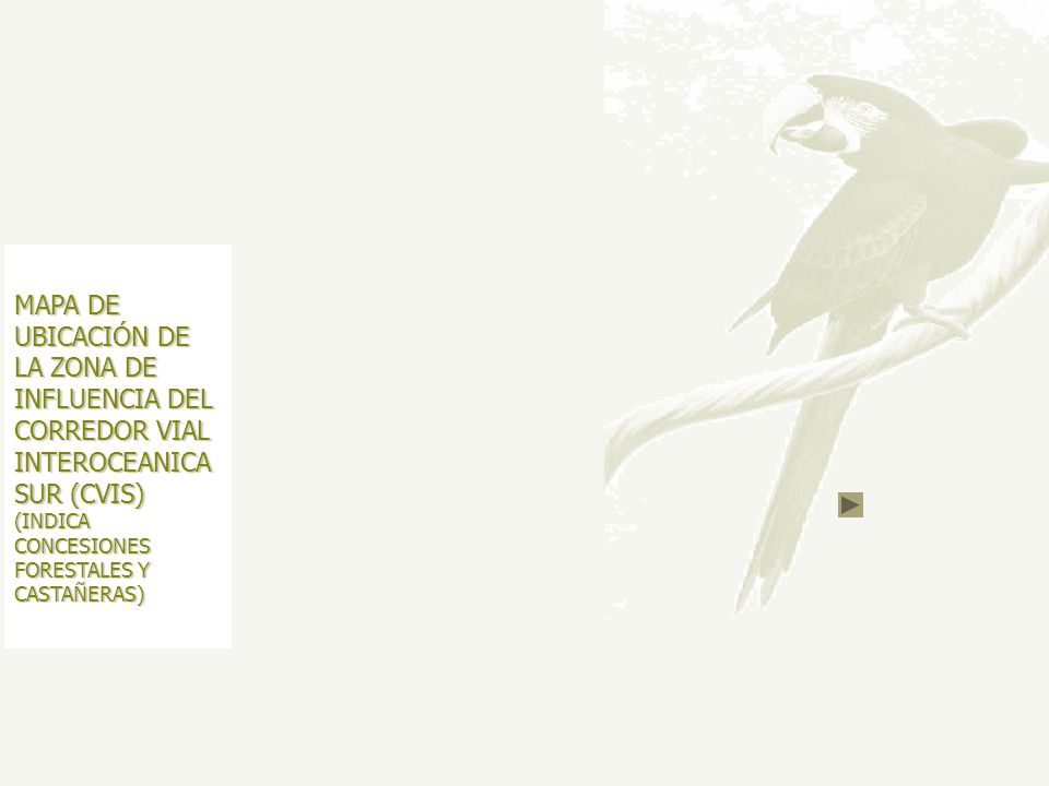 MAPA DE UBICACIÓN DE LA ZONA DE INFLUENCIA DEL CORREDOR VIAL INTEROCEANICA SUR (CVIS) (INDICA CONCESIONES FORESTALES Y CASTAÑERAS)