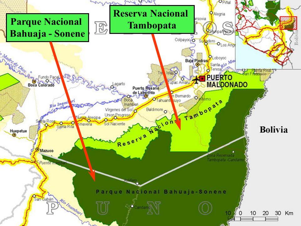 Reserva Nacional Tambopata Parque Nacional Bahuaja - Sonene
