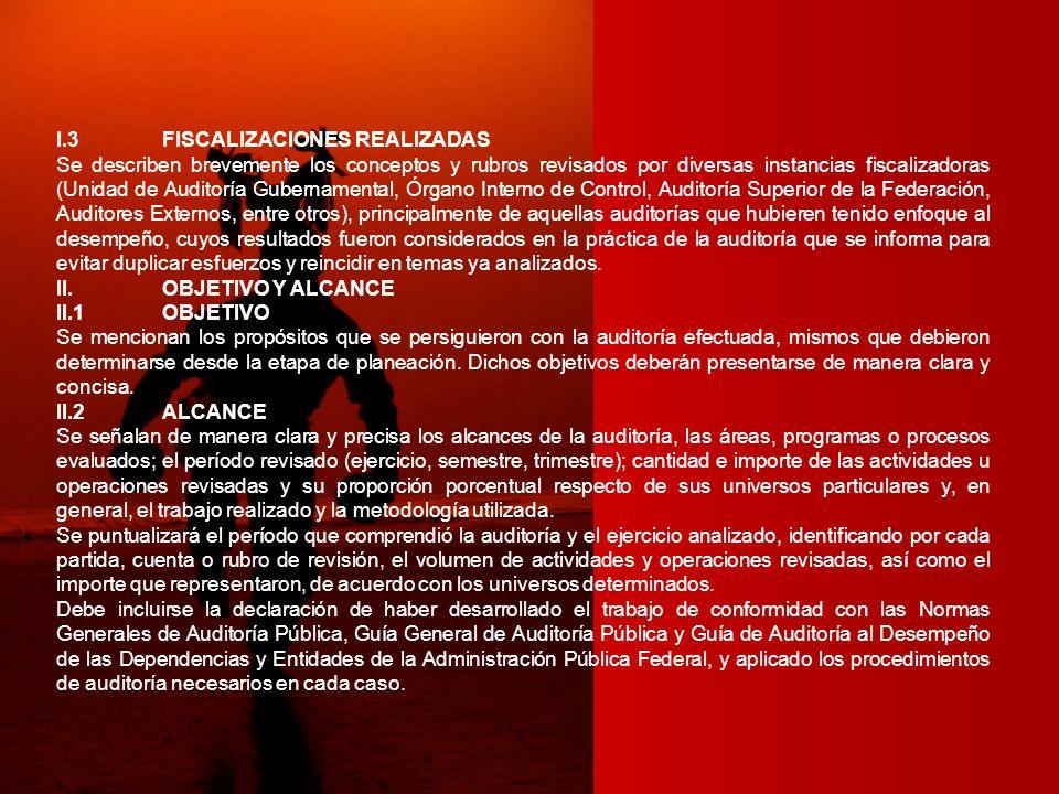 I.3 FISCALIZACIONES REALIZADAS