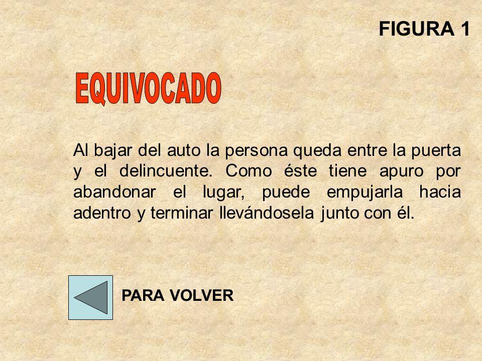 FIGURA 1 EQUIVOCADO.