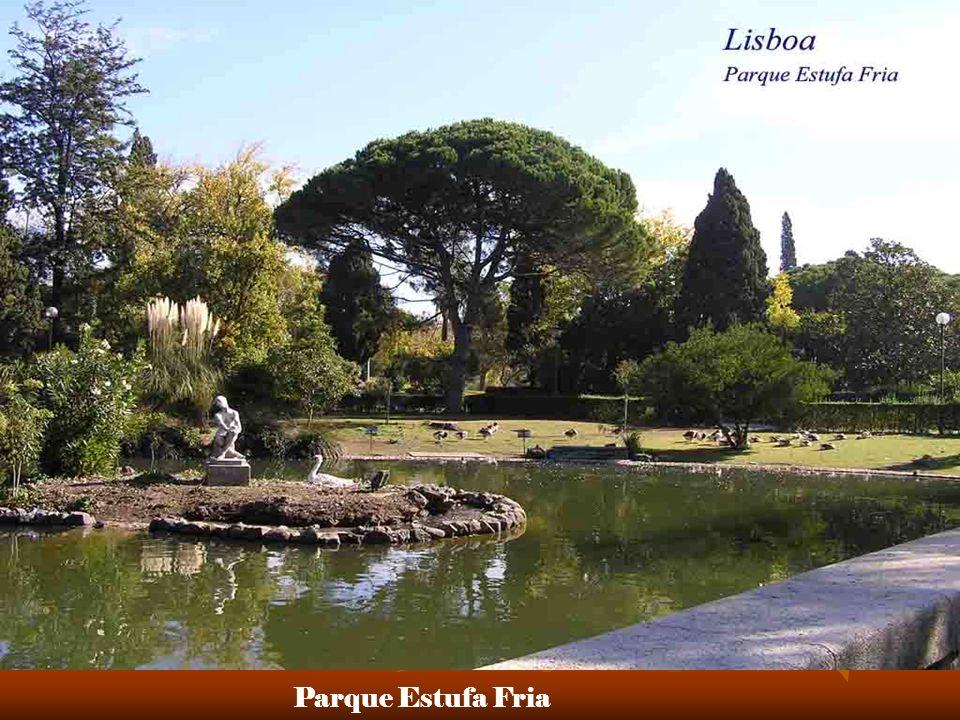 Parque Estufa Fria