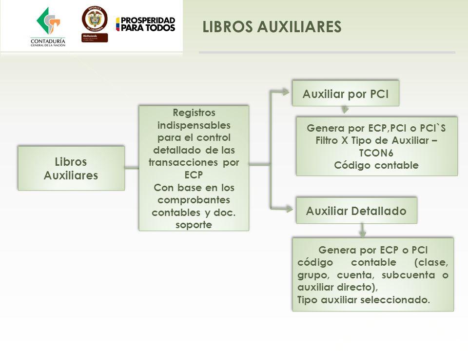 LIBROS AUXILIARES Auxiliar por PCI Libros Auxiliares