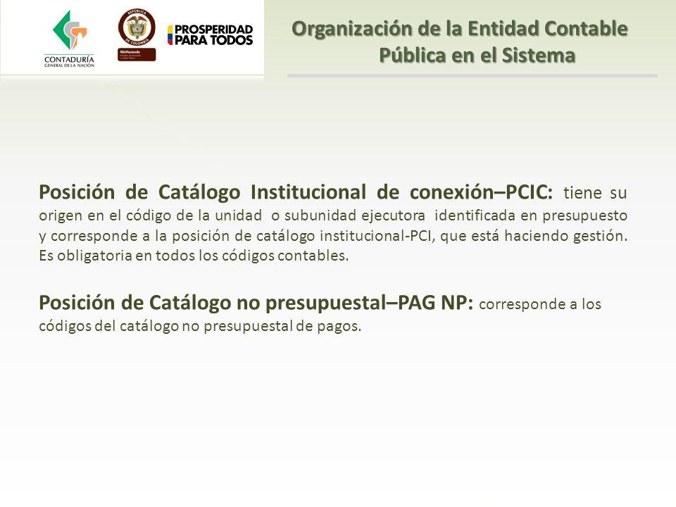 Organización de la Entidad Contable Pública en el Sistema