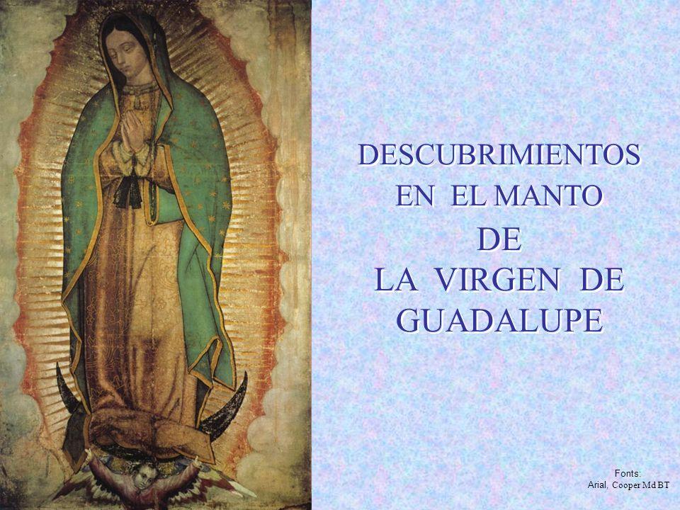 DE LA VIRGEN DE GUADALUPE DESCUBRIMIENTOS EN EL MANTO Fonts: