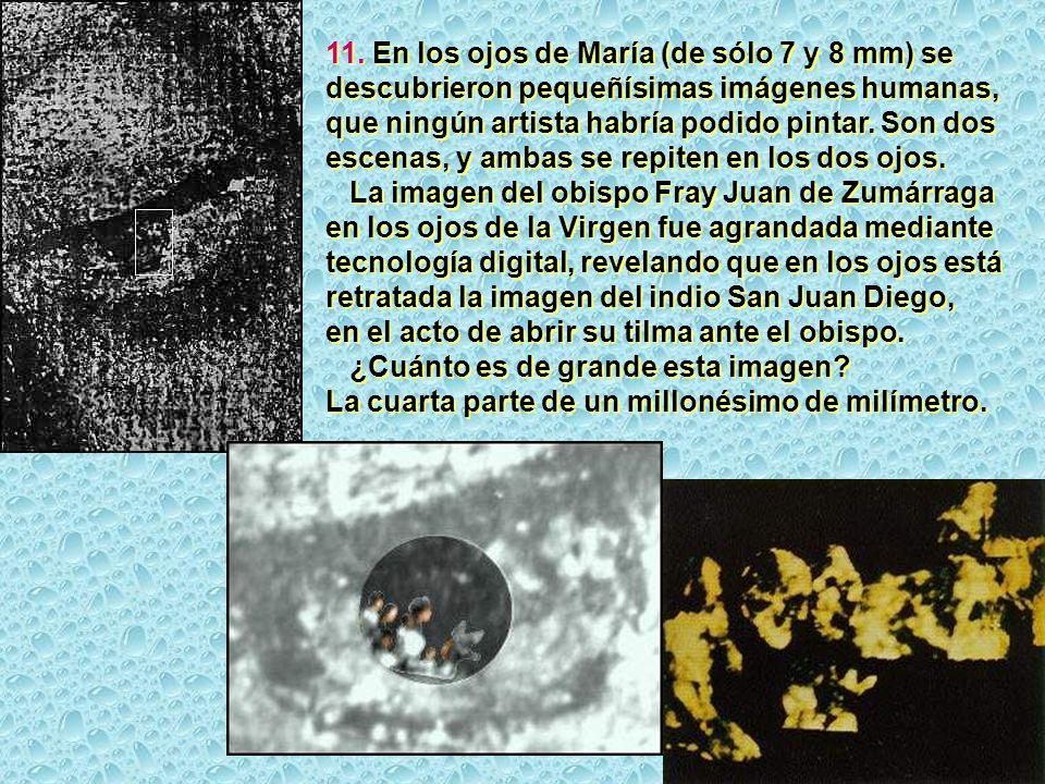 11. En los ojos de María (de sólo 7 y 8 mm) se