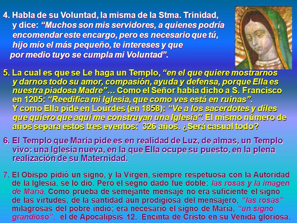 4. Habla de su Voluntad, la misma de la Stma. Trinidad,