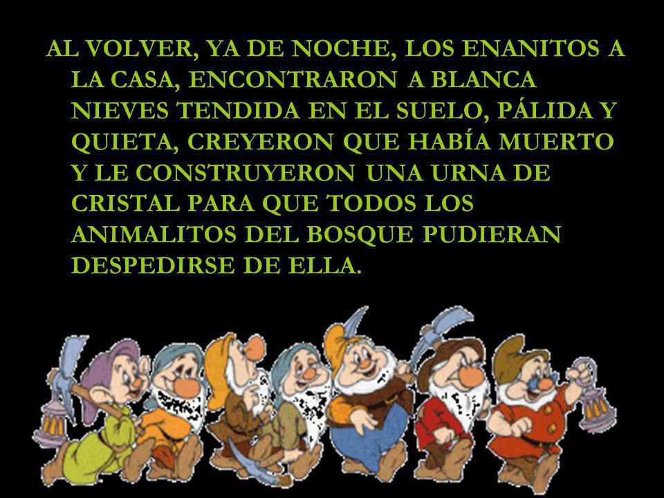 AL VOLVER, YA DE NOCHE, LOS ENANITOS A LA CASA, ENCONTRARON A BLANCA NIEVES TENDIDA EN EL SUELO, PÁLIDA Y QUIETA, CREYERON QUE HABÍA MUERTO Y LE CONSTRUYERON UNA URNA DE CRISTAL PARA QUE TODOS LOS ANIMALITOS DEL BOSQUE PUDIERAN DESPEDIRSE DE ELLA.