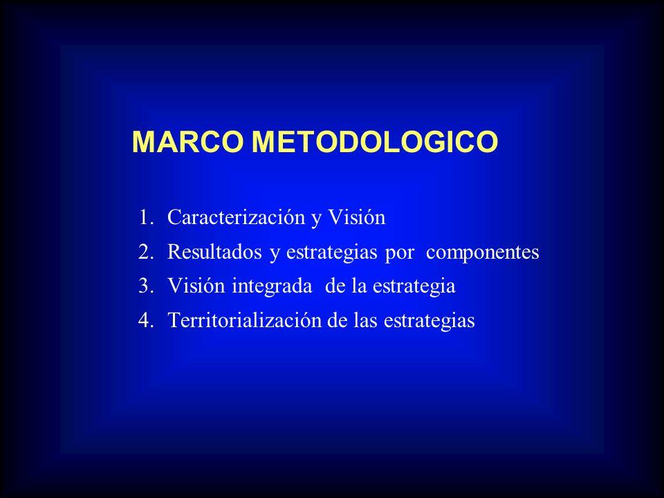 MARCO METODOLOGICO 2. Resultados y estrategias por componentes