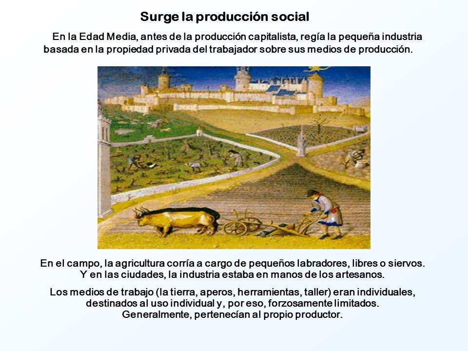 Surge la producción social