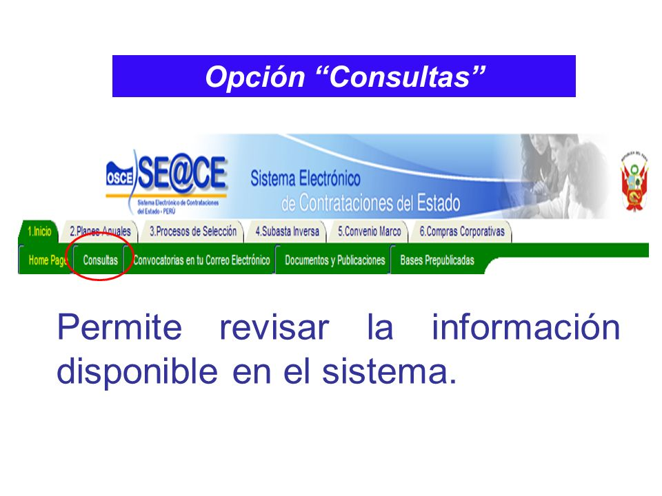 Permite revisar la información disponible en el sistema.