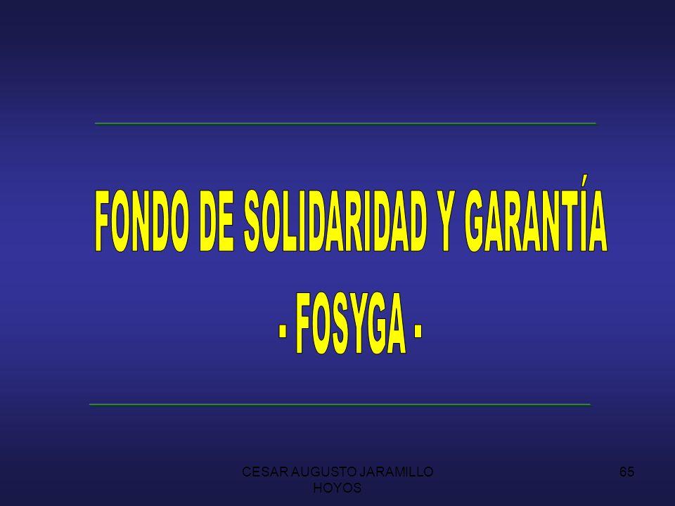 FONDO DE SOLIDARIDAD Y GARANTÍA - FOSYGA -