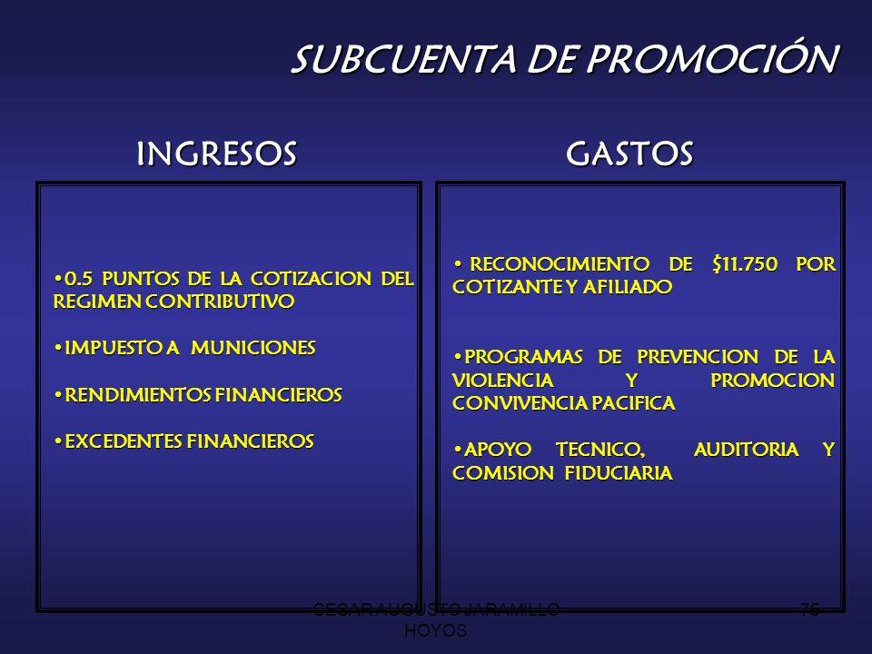 SUBCUENTA DE PROMOCIÓN