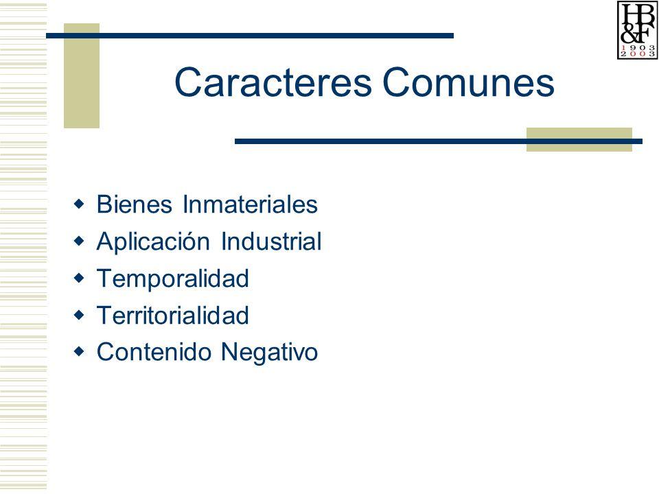 Caracteres Comunes Bienes Inmateriales Aplicación Industrial