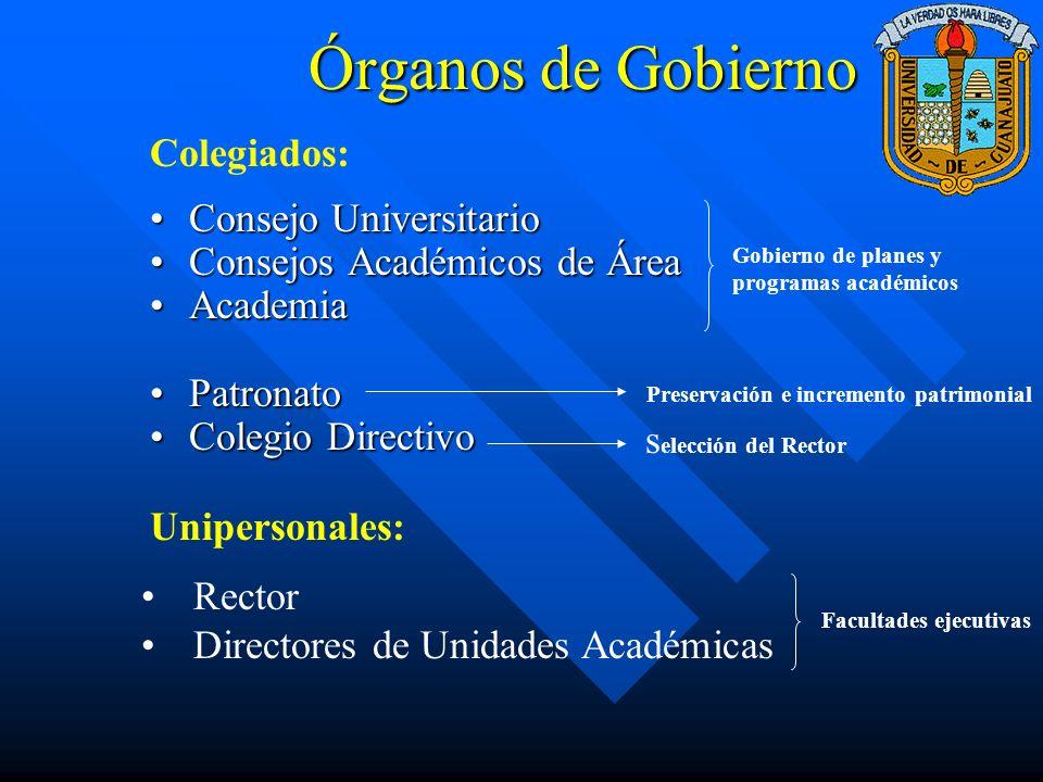 Órganos de Gobierno Colegiados: Consejo Universitario