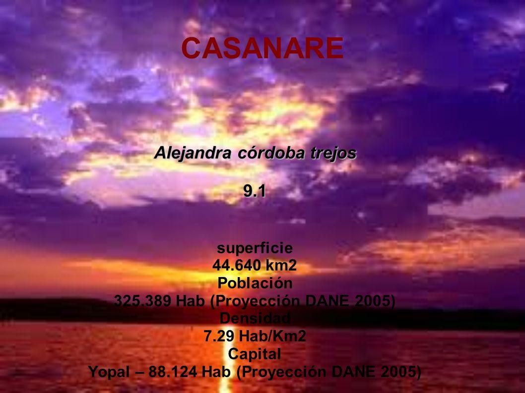 Alejandra córdoba trejos Yopal – 88.124 Hab (Proyección DANE 2005)