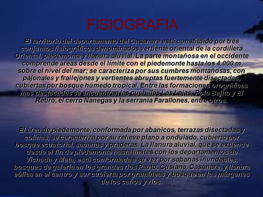 FISIOGRAFIA