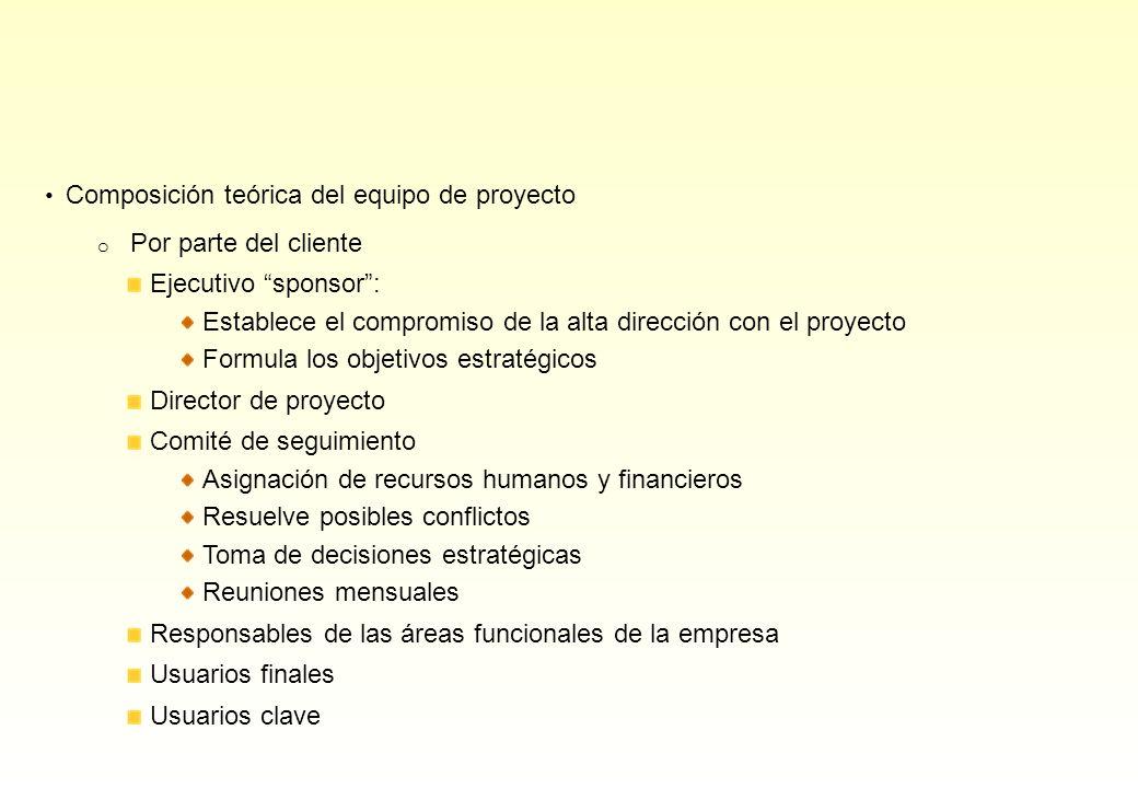 Composición teórica del equipo de proyecto