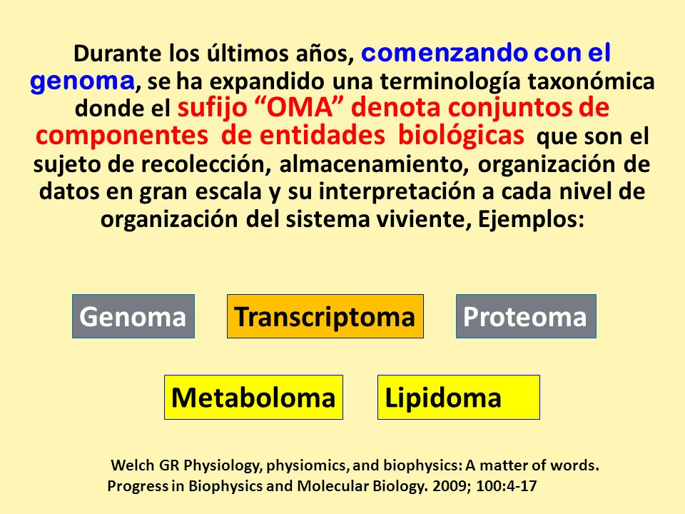 Genoma Transcriptoma Proteoma Metaboloma Lipidoma