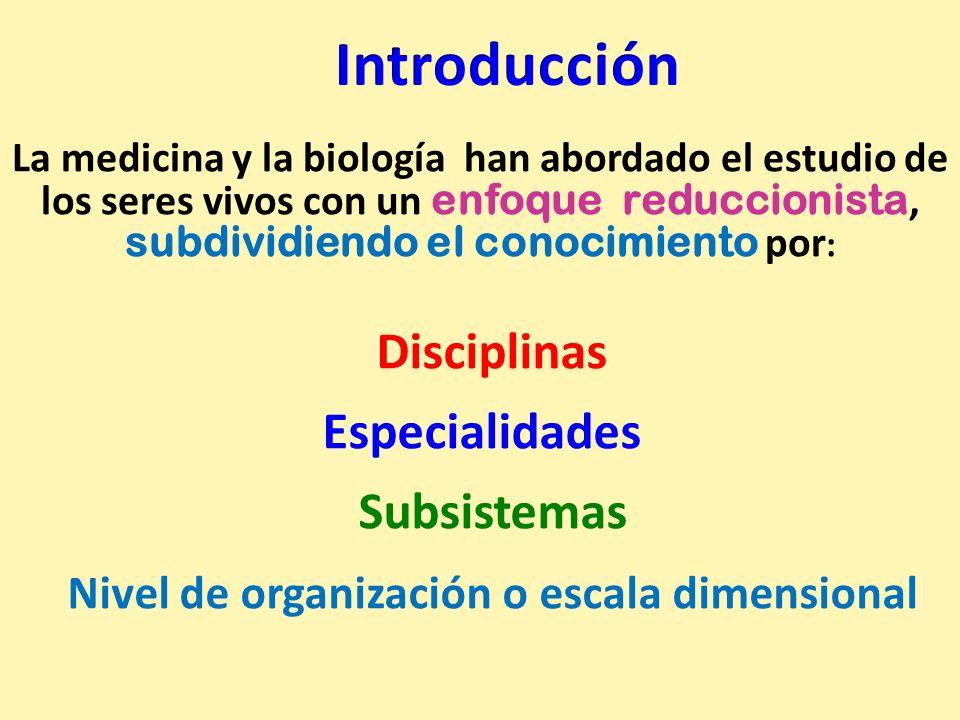 Nivel de organización o escala dimensional