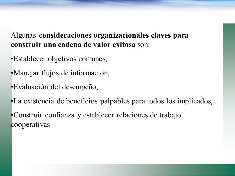 Algunas consideraciones organizacionales claves para construir una cadena de valor exitosa son: