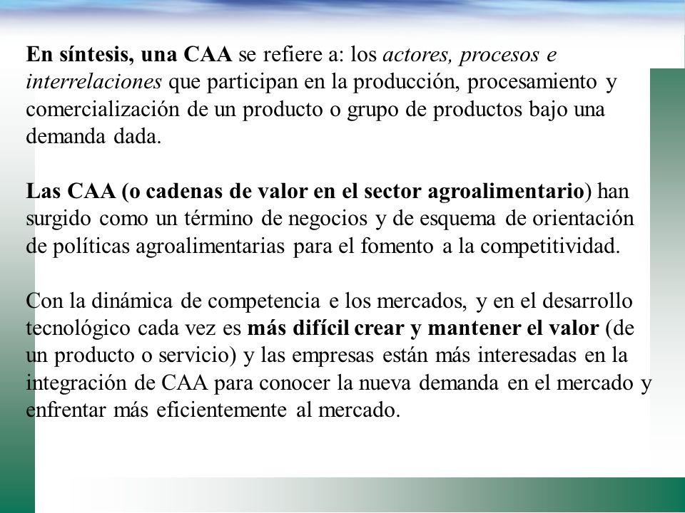 En síntesis, una CAA se refiere a: los actores, procesos e interrelaciones que participan en la producción, procesamiento y comercialización de un producto o grupo de productos bajo una demanda dada.