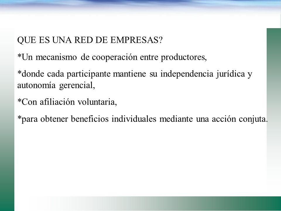 QUE ES UNA RED DE EMPRESAS