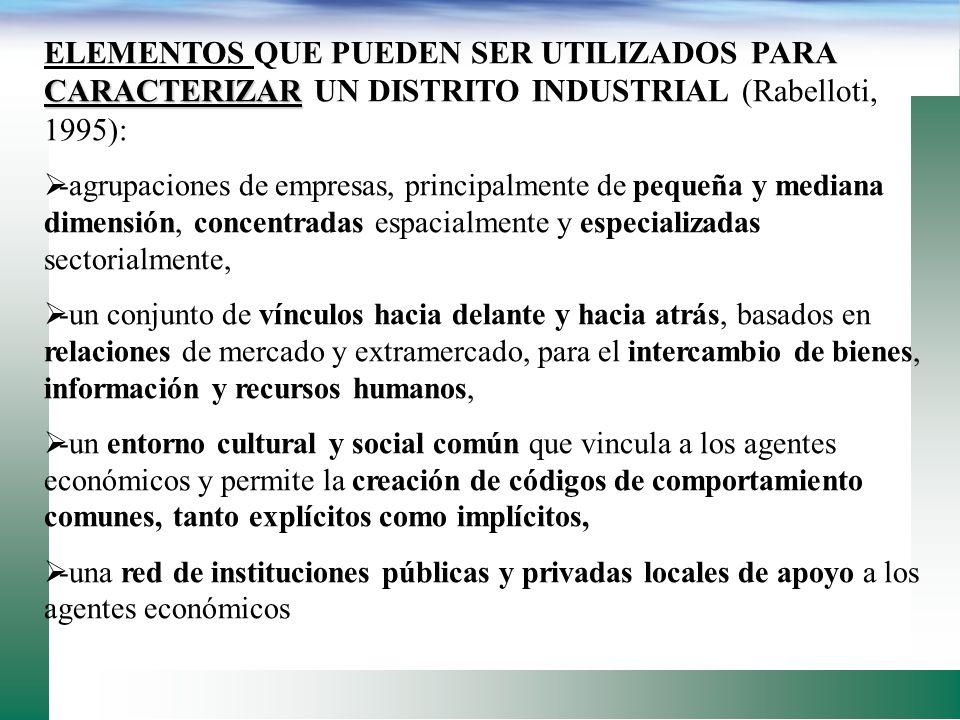 ELEMENTOS QUE PUEDEN SER UTILIZADOS PARA CARACTERIZAR UN DISTRITO INDUSTRIAL (Rabelloti, 1995):