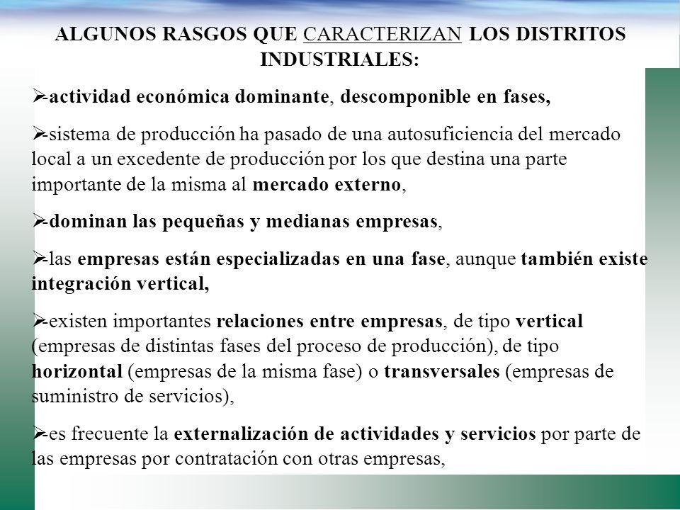 ALGUNOS RASGOS QUE CARACTERIZAN LOS DISTRITOS INDUSTRIALES: