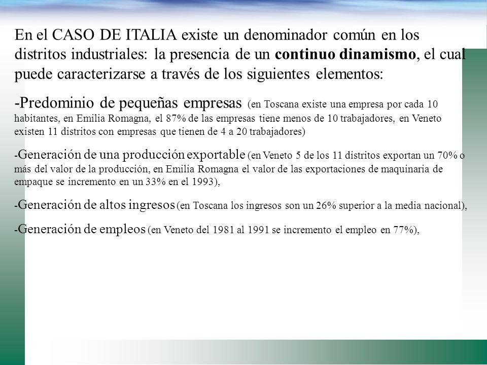 En el CASO DE ITALIA existe un denominador común en los distritos industriales: la presencia de un continuo dinamismo, el cual puede caracterizarse a través de los siguientes elementos: