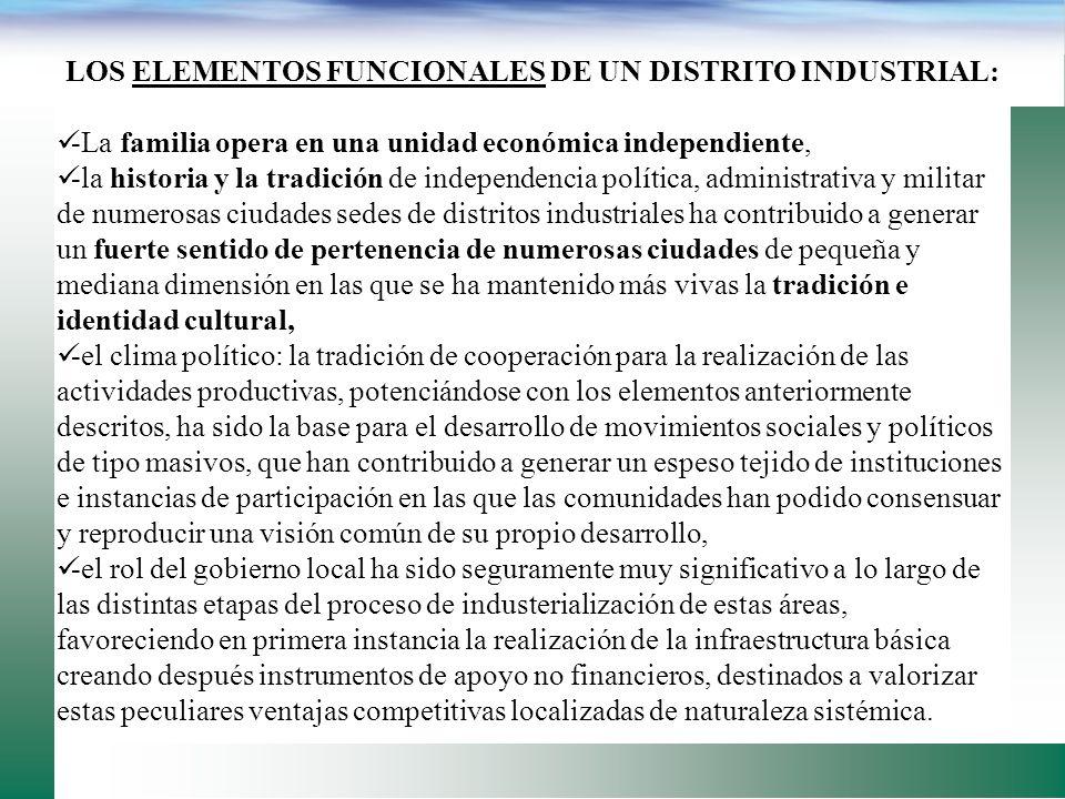 LOS ELEMENTOS FUNCIONALES DE UN DISTRITO INDUSTRIAL: