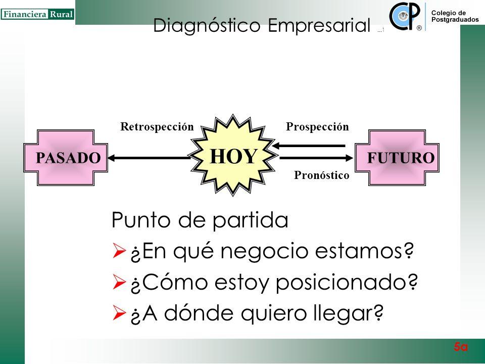 Diagnóstico Empresarial ...1