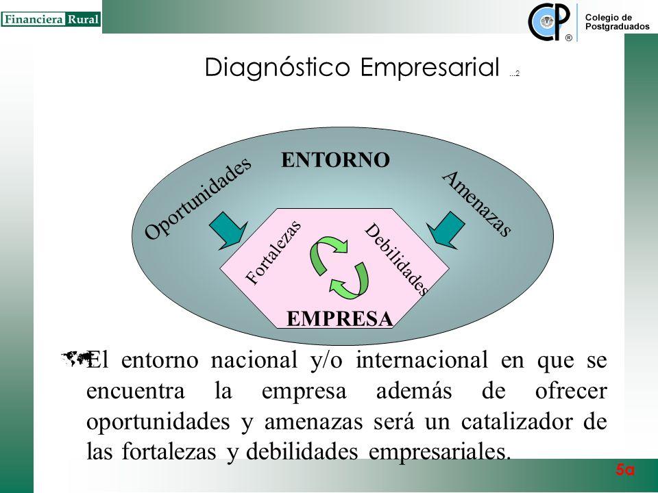 Diagnóstico Empresarial ...2
