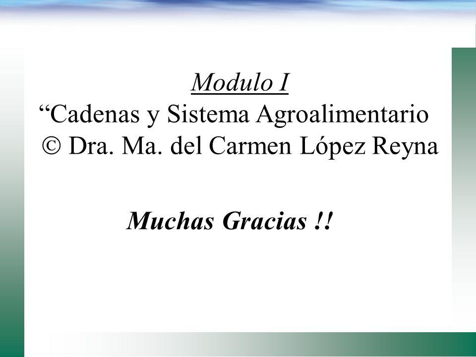 Cadenas y Sistema Agroalimentario  Dra. Ma. del Carmen López Reyna