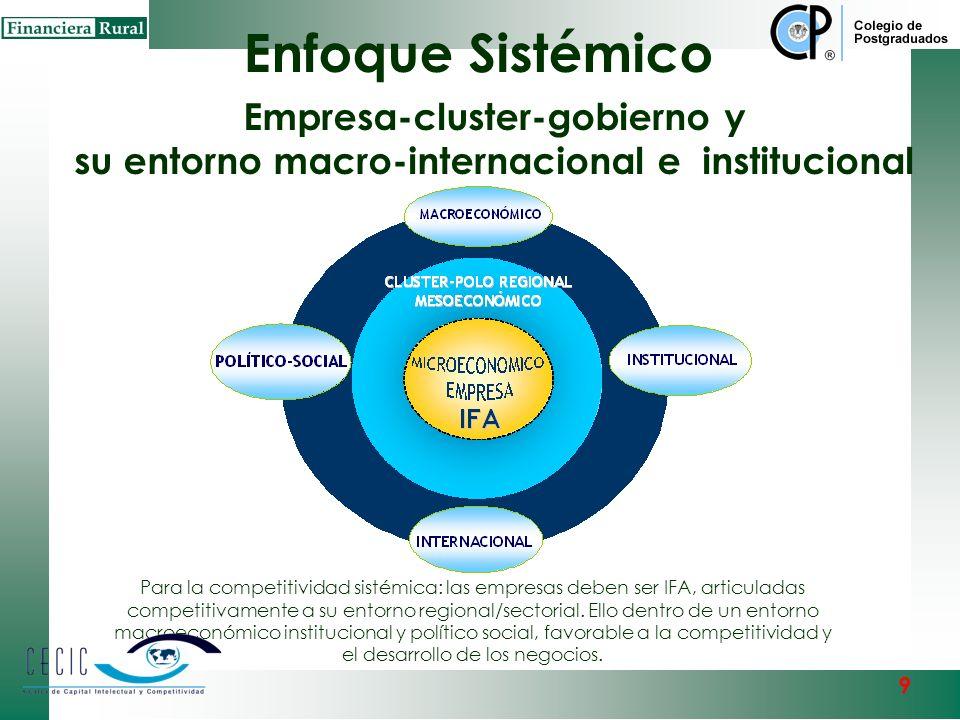 Enfoque Sistémico Empresa-cluster-gobierno y su entorno macro-internacional e institucional.