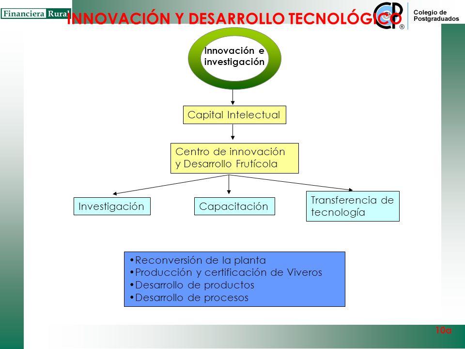 Innovación e investigación