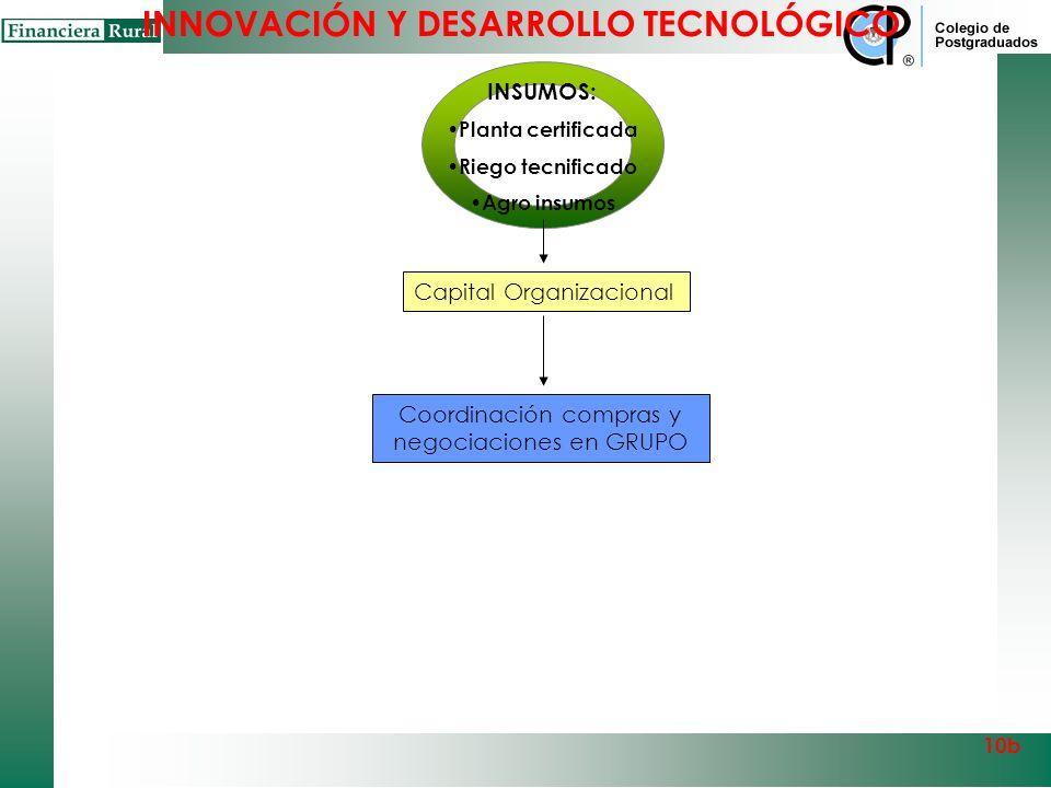 Coordinación compras y negociaciones en GRUPO