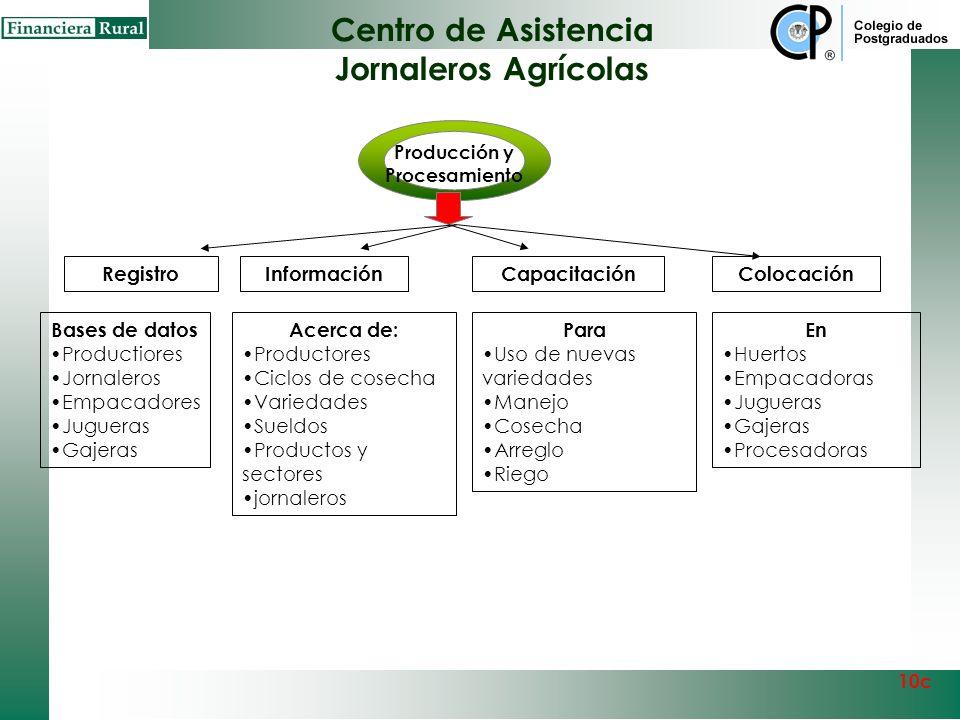 Centro de Asistencia Jornaleros Agrícolas Producción y Procesamiento