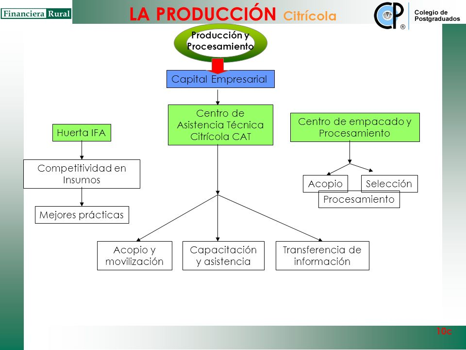 Producción y Procesamiento
