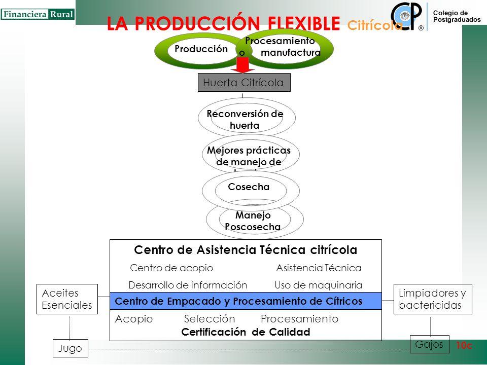 Procesamiento o manufactura