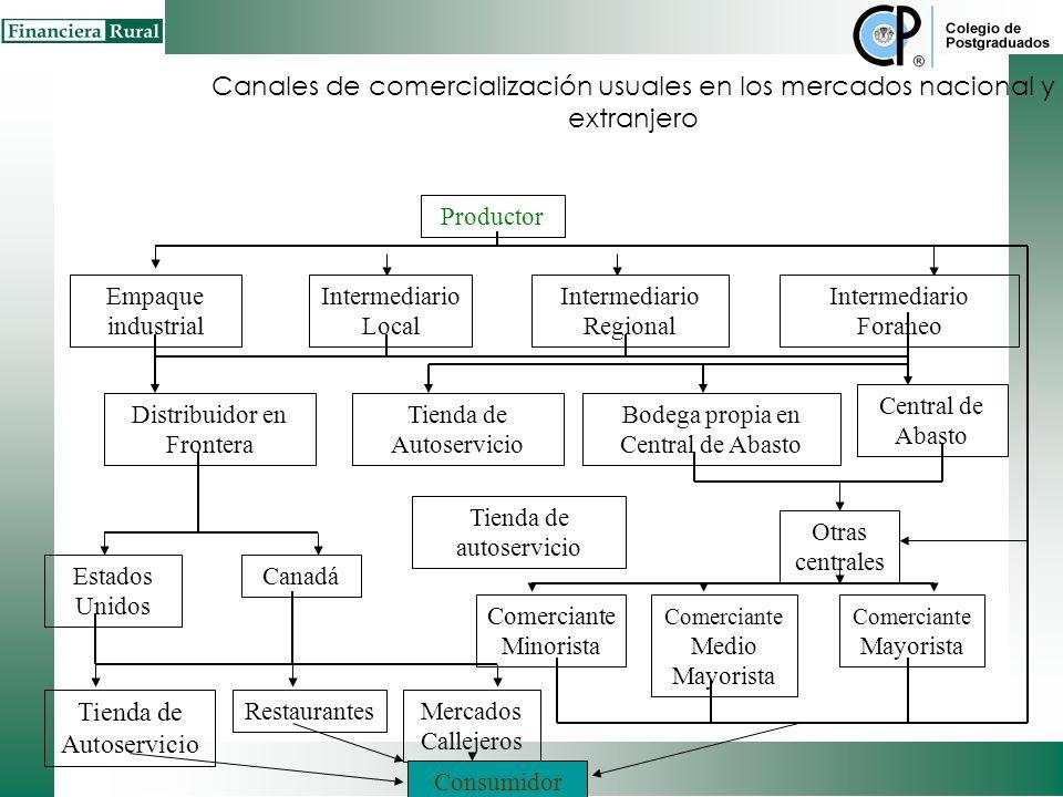 Canales de comercialización usuales en los mercados nacional y extranjero