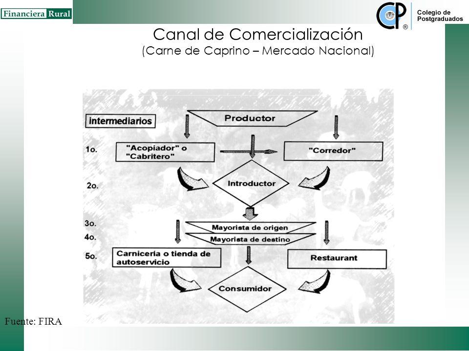 Canal de Comercialización (Carne de Caprino – Mercado Nacional)