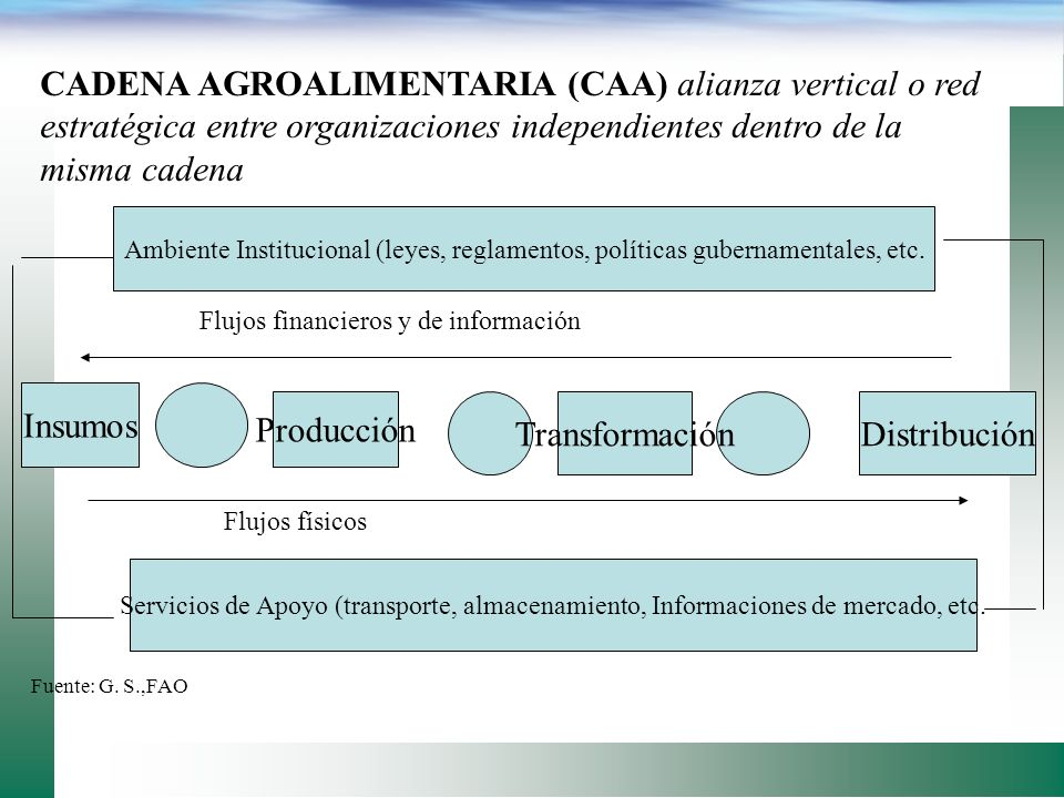 CADENA AGROALIMENTARIA (CAA) alianza vertical o red estratégica entre organizaciones independientes dentro de la misma cadena