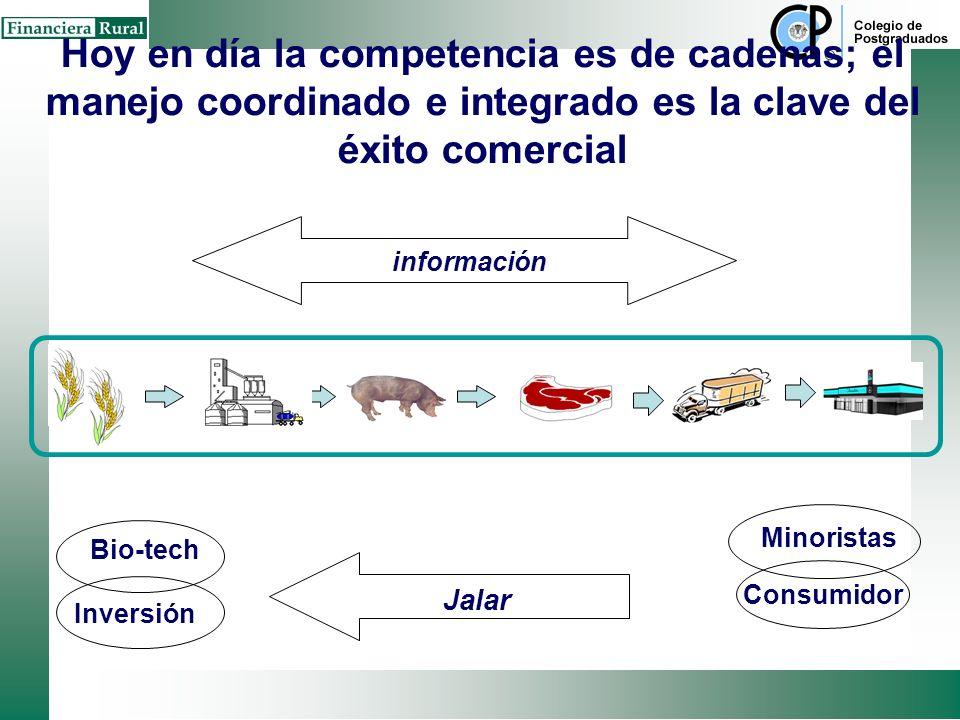 Hoy en día la competencia es de cadenas; el manejo coordinado e integrado es la clave del éxito comercial