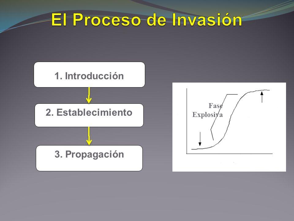El Proceso de Invasión 1. Introducción 2. Establecimiento