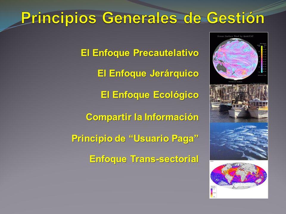 Principios Generales de Gestión
