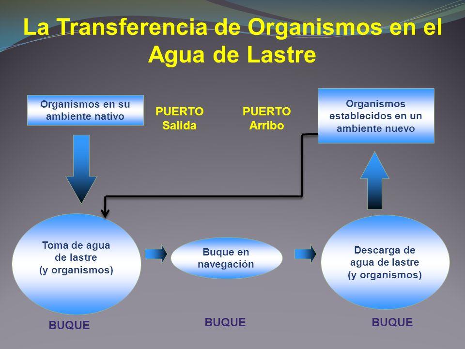 La Transferencia de Organismos en el Agua de Lastre