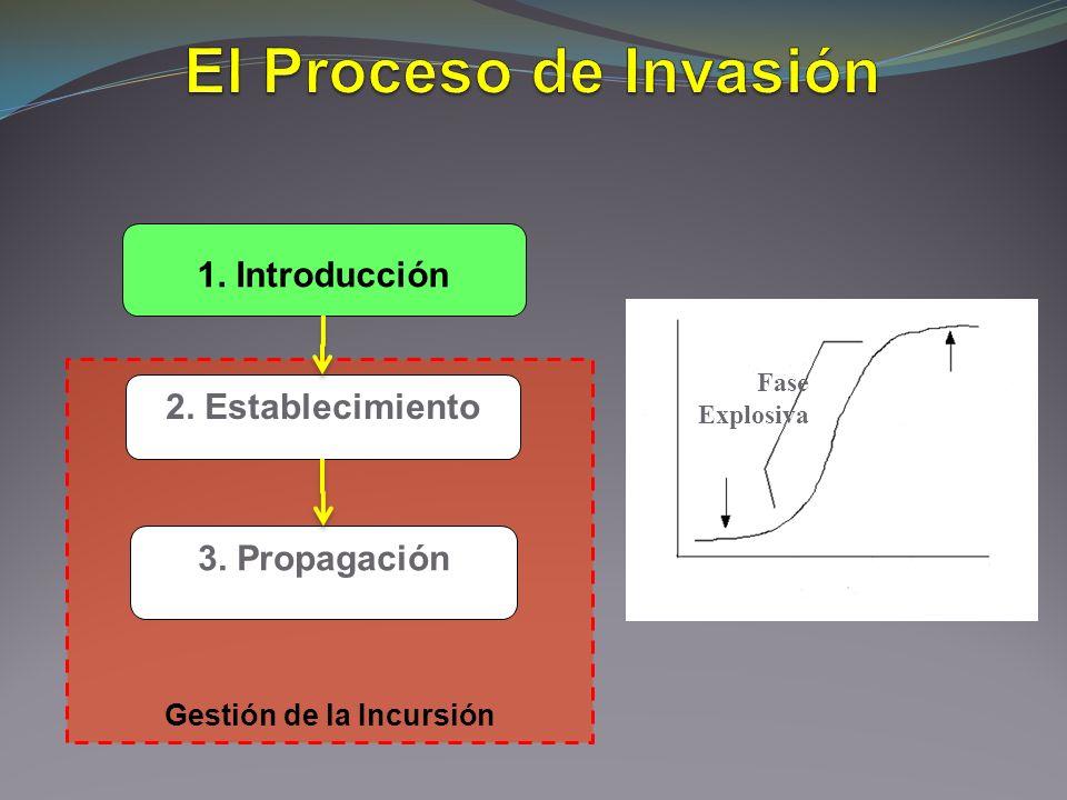 Gestión de la Incursión