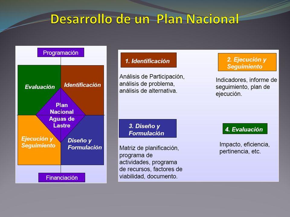 Desarrollo de un Plan Nacional